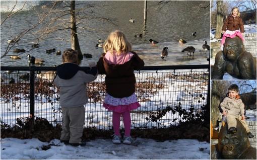 2009-january-zoo